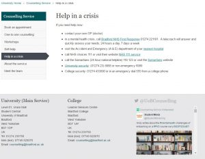 counselling website screenshot